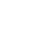 Logo Study & Work International